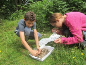 Mother and son pourong over a stream sampling tray