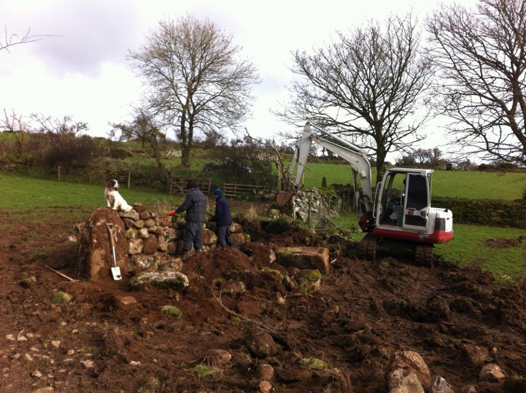 Dry stone wall building at Shallowford Farm