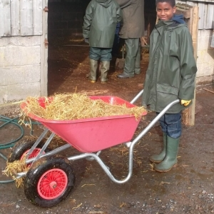 Working a 2 wheeled wheelbarrow is not easy
